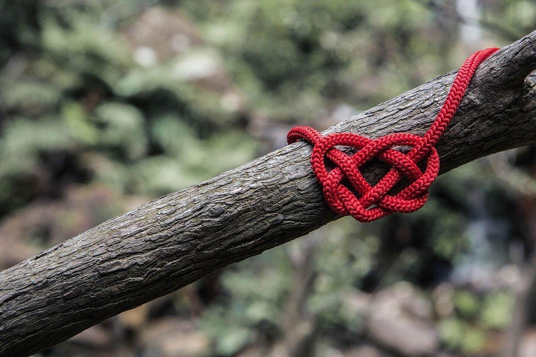 Weg des Herzens folgen